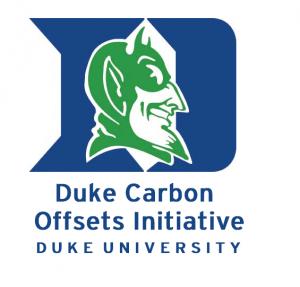 DCOI logo