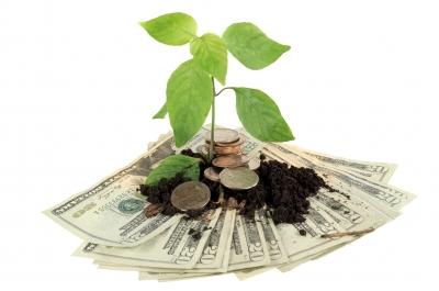 Public Finance & Environmental Sustainability